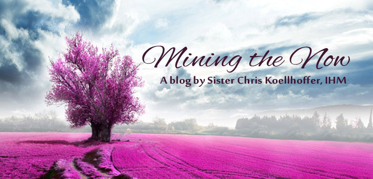 Share in the reflections of Sister Chris Koellhoffer's blog